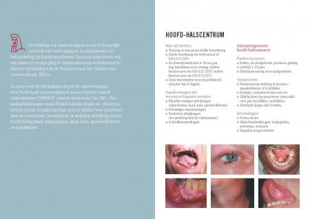Screening-Hoofd-Hals_tumoren_Page_2
